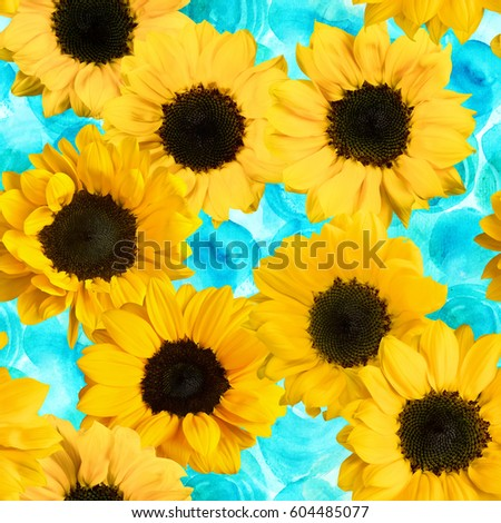 Seamless pattern made up by photos of yellow sunflowers, on a teal blue watercolor texture with hand painted circles #604485077