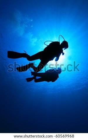 Scuba Divers #60569968