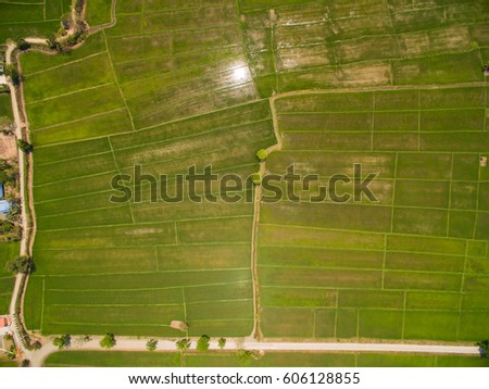 Rice Terrace Aerial Shot. Image of beautiful terrace rice field in Chiang Mai Thailand #606128855