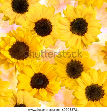 A pattern with photos of shiny yellow sunflowers on a watercolor pastel dots background #607053731
