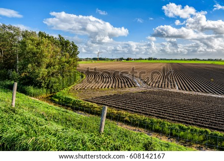 Agriculture field landscape #608142167
