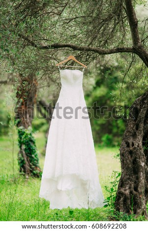 The bride's dress hangs on a hanger on an olive tree. Collecting brides in an olive grove in Montenegro. Wedding in Europe. #608692208