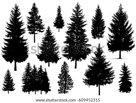 Set. Silhouette of pine trees.   Royalty-Free Stock Photo #609452315
