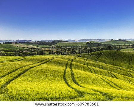 Rural landscape of Italy #609983681