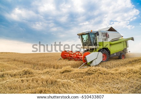 Combine harvester in action on wheat field. Harvesting is the process of gathering a ripe crop from the fields. #610433807