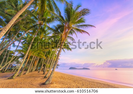 Sunrise at Palm Cove one of the popular tourist towns north of Cairns in Tropical North Queensland, Australia #610516706
