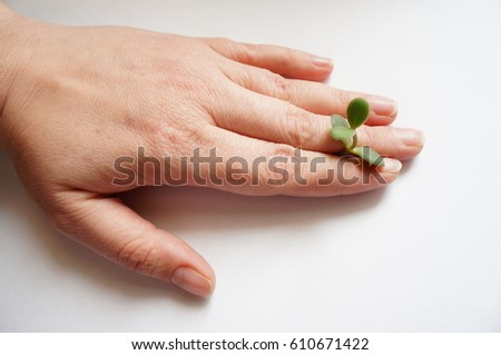 Plant in hand #610671422