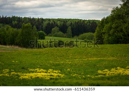 green meadows with clouds #611436359