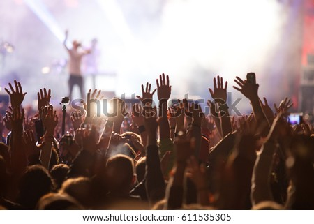 crowd at concert - summer music festival #611535305