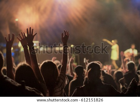 crowd at concert - summer music festival #612151826