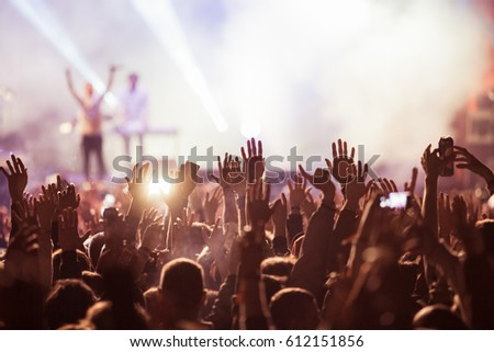 crowd at concert - summer music festival #612151856