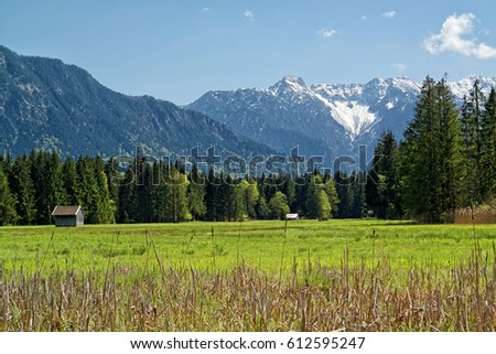 Moorlands called Murnauer Moos near Garmisch Partenkirchen in spring with the mountains of the bavarian alps in the background, Bavaria, Germany #612595247