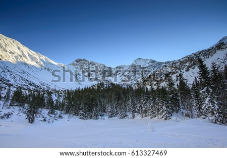 winter in mountains #613327469