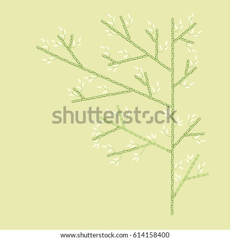 Big Bamboo Tree with White Leaves, Green Stem on Salad Green Background #614158400