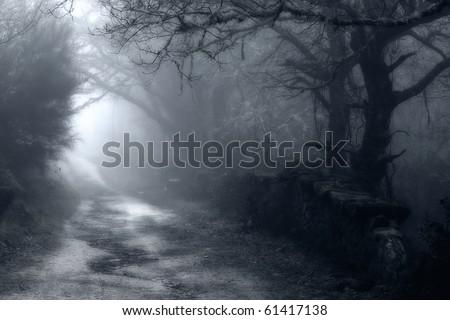 Foggy autumn day #61417138