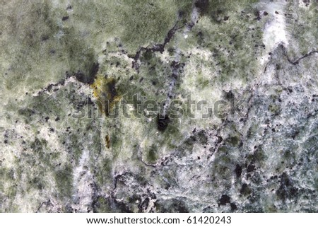 Carrara marble #61420243