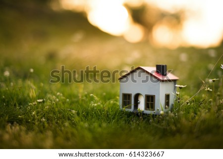 Model house in the meadow with grass and daisies in the evening. #614323667