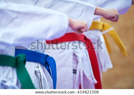young, beautiful, successful multi ethical karate kids in karate position                Royalty-Free Stock Photo #614821508