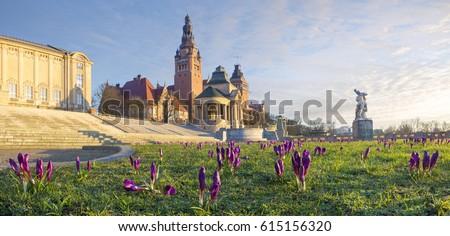 Crocuses blooming on Haken Terrace in Szczecin, Poland Royalty-Free Stock Photo #615156320