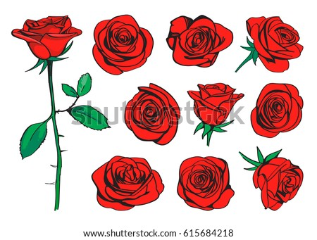 Red roses hand drawn color set. Black line rose flowers inflorescence silhouettes isolated on white background. Icon roses collection. Vector doodle illustration.