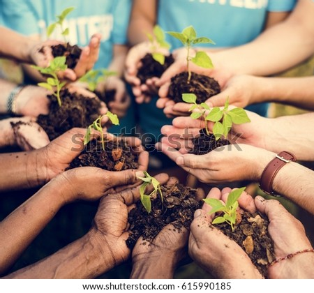 Group of environmental conservation people hands planting in aerial view #615990185