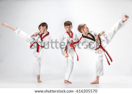 The studio shot of group of kids training karate martial arts #616205570