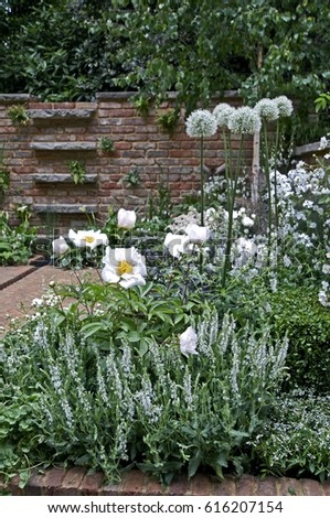 A brick courtyard garden with an all white planting #616207154