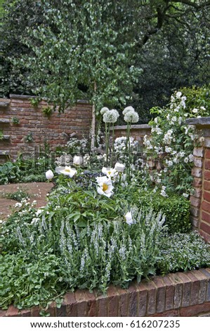 A brick courtyard garden with an all white planting #616207235