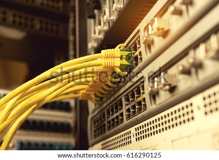 network cables connected to switch or router. Internet network communication concept #616290125