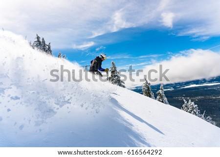 ski 3 #616564292