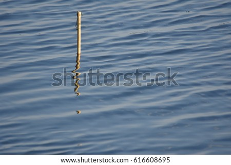 Water Surface and reflection of little wood , abstract  #616608695
