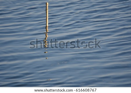 Water Surface and reflection of little wood , abstract  #616608767