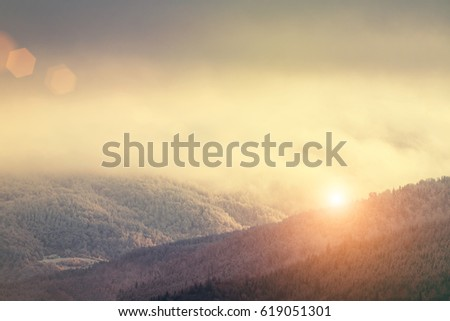 Winter Mountain covered by forest in the fog at sunrise or sunset #619051301