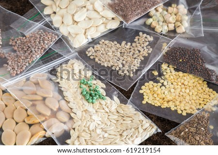 Packets of different seeds. Planting time. Early spring preparations for the garden season. Paprika, tomato, pumpkin, courgette, cabbage, radish, beet, peas, carrot and dill seeds. Royalty-Free Stock Photo #619219154