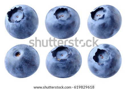 Blueberry. Fresh raw berries isolated on white background. With clipping path. Collection. #619829618