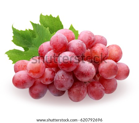 a brush of red grapes with water drops with leaves, isolated on white background. fruit, berries, food. #620792696