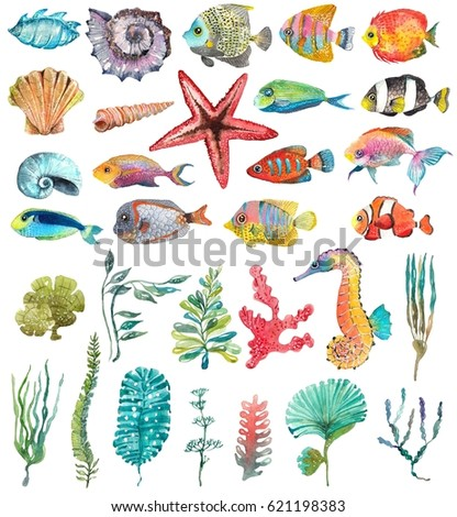 Watercolor Sea Life, Seaweed, Shell, fish, sea horse, beautiful collection for design