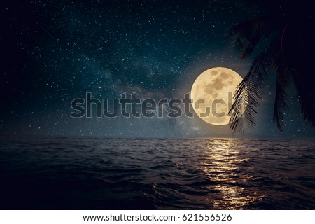 Beautiful fantasy tropical beach with star and full moon in night skies - Retro style artwork with vintage color tone  #621556526