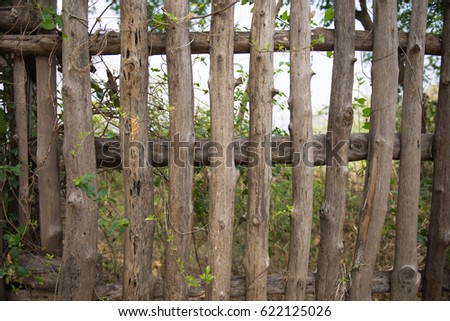 Old forest wooden fence background  #622125026