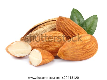 almond isolated on white background. with green leaf  #622418120