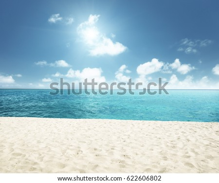sunny tropical beach and perfect sky #622606802