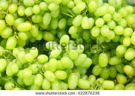 Green grapes for sale at a market or Fresh green grapes #622876238