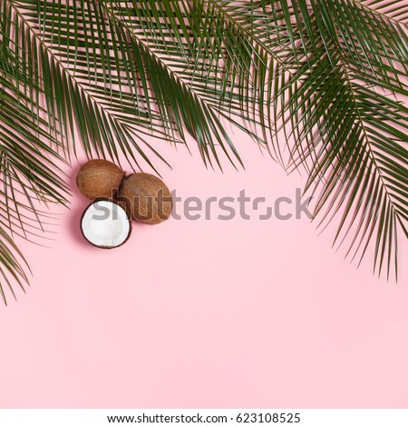 Palm leaves and coconuts whole and halves of coconut on a pink pastel background #623108525