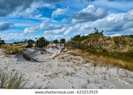 Western Pomerania Lagoon Area National Park, Germany Royalty-Free Stock Photo #623253929