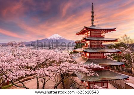 Fujiyoshida, Japan at Chureito Pagoda and Mt. Fuji in the spring with cherry blossoms. #623610548
