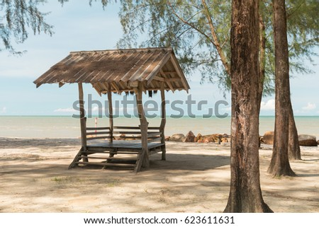 Wild pine trees in the beautiful seaside in the summer  #623611631