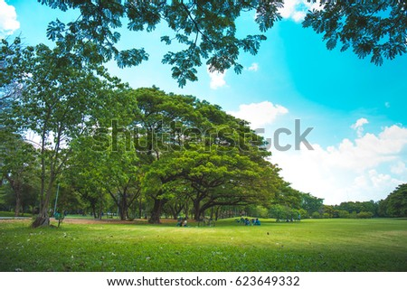 Bangkok, THAILAND - April 18 2017 : Park where people like to relax in Bangkok.,Vachirabenjatas Park #623649332