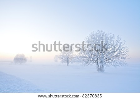 Winter landscape of frosty trees on foggy background Royalty-Free Stock Photo #62370835