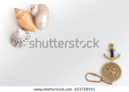 Tropical seashells and copper anchor, on white background. Composition on the sea theme.