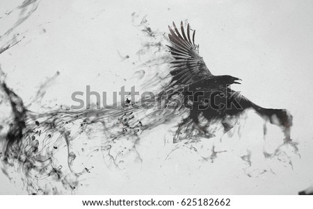 Bird - Flying Black Raven #625182662